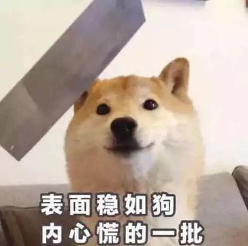 男s收m见面指南